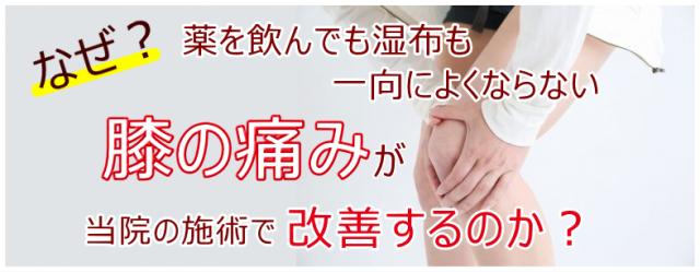 なぜ?薬を飲んでも湿布も一向によくならない膝の痛みが当院の施術で改善するのか?